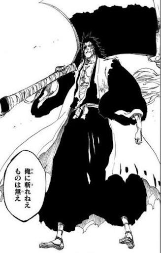 斬魄刀・野晒を持っているBLEACHの更木剣八